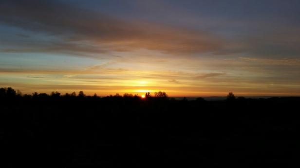 513 Sholan Dawn