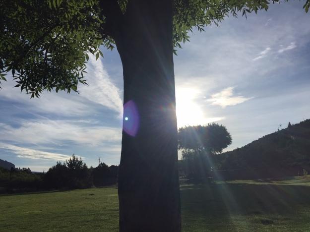sunset park 1